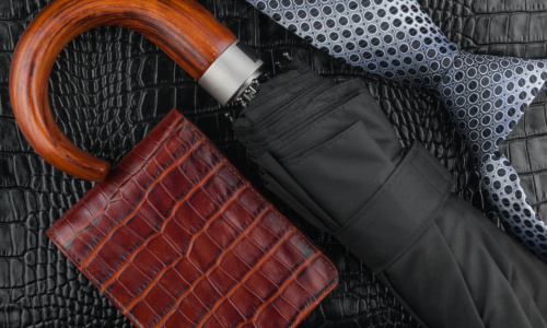 26494657 - a necktie, wallet, umbrella  lying on the skin, can be used as background
